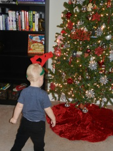 "Rowdy wearing his reindeer ""hat"" and admiring our Christmas Tree."