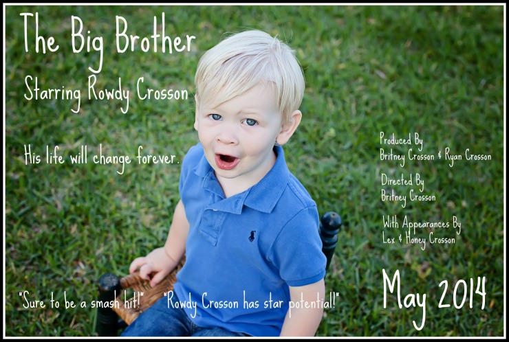 The Big Brother new
