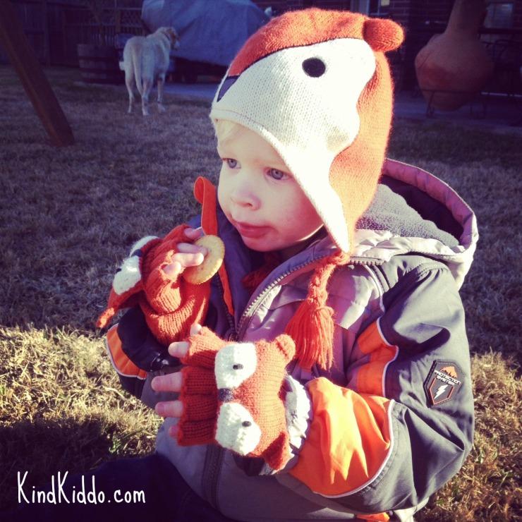 KK Rowdy Little Maven Fox 01-2014
